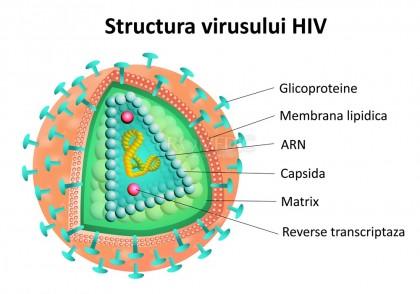Infectia perinatala cu HIV