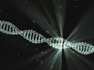 CRISPR - editarea genomului uman