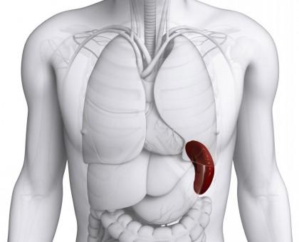 Infarctul splenic - complicație a fibrilației atriale?