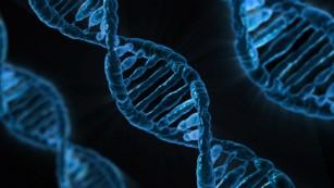 Tratamentul cancerului cu CRISPR