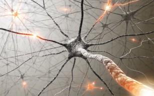 scădere în greutate în scleroza laterală amiotrofică tehnică japoneză de a pierde grăsime