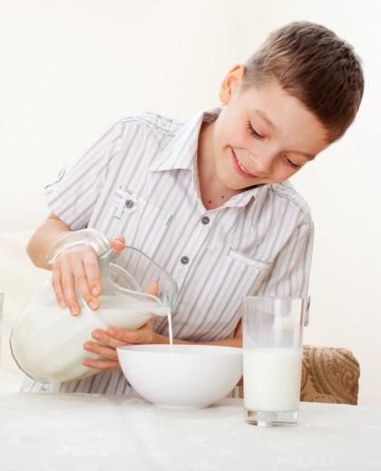 Lactatele in alimentatia copilului