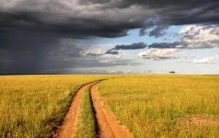 Anxietatea și Atacurile de Panică – Deslușiri și Leacuri