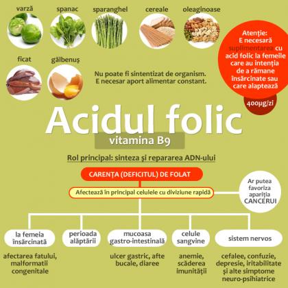 Acidul folic (Vitamina B9)