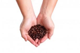 Consumul de cafea este determinat genetic, sugerează un studiu