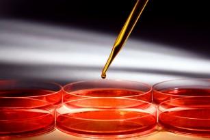 HIV: cum se transmite și când se poate face testul?