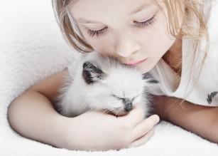 Animalele de companie benefice pentru copiii cu autism (studiu)
