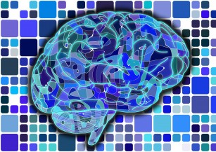 Care sunt procesele prin care somnul consolidează memoria?