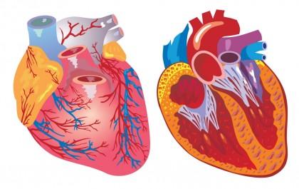 Dispozitivul electric pentru îmbunătățirea funcției cardiace