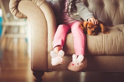 Copiii sunt mai mulțumiți de relația cu animalul de companie decât de relația cu frații