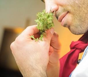 Pierderea mirosului, asociată cu decesul precoce