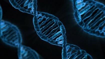 Un test care analizează peste 500,000 variante genetice a fost aprobat de FDA