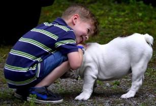 Câinii de companie ajută copiii să se simță mai puțin stresați