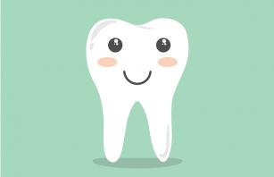 Vasele sanguine prefabricate ar putea revoluționa tratamentele pe canalul dentar
