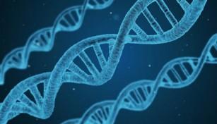 Nașterile premature pot avea și cauză genetică