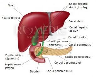 Investigații paraclinice în bolile hepatice și biliare