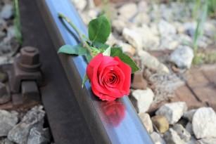 Suicidul - mituri, semnale de alarmă și impactul negativ al stigmatizării