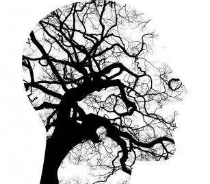 Cercetătorii au identificat sursa fizică a anxietății, la nivelul creierului