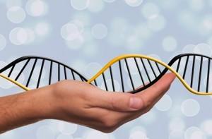 Riscul de cancer ovarian poate fi influențat de genele moștenite de la tată