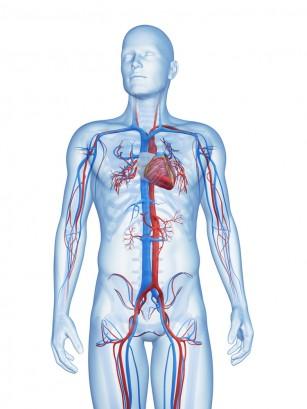 Vitamina D3 ar putea anula leziunile cardiovasculare