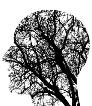 Ce se întâmplă în creier cu câteva minute înainte de a muri?