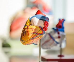 Editarea genomului ar putea reduce riscul cardiovascular