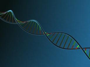 36 gene implicate în apariția bolilor cardiovasculare