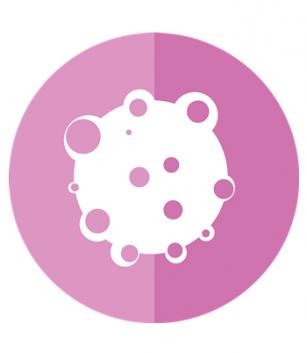 Nanoparticule polimerice pentru localizarea și tratarea tumorilor mamare