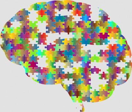 Activitatea creierului în repaus oferă indicii despre inteligență