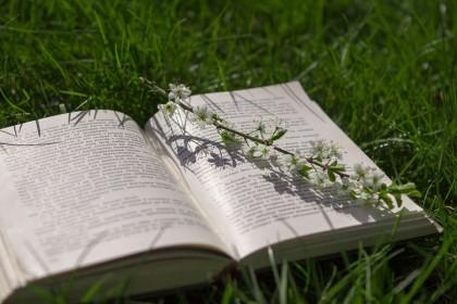 Cum influențează cititul capacitatea cognitivă și gândirea