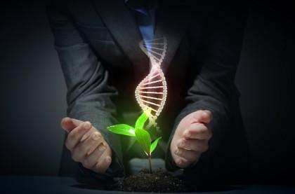 Cum influențează programul de lucru în ture de noapte genele noastre?