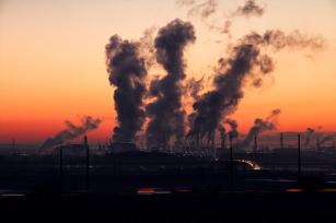 Riscuri noi de deficiențe nutriționale odată cu creșterea nivelului de CO2