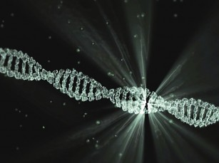 Noi evidențe privind legătura dintre mediu și modificările genetice