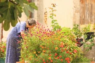 Experiențele stresante trăite la vârsta mijlocie, factor de risc pentru boala Alzheimer