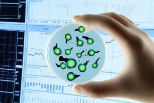 Descoperirile recente deschid calea tratamentelor antivirale universale