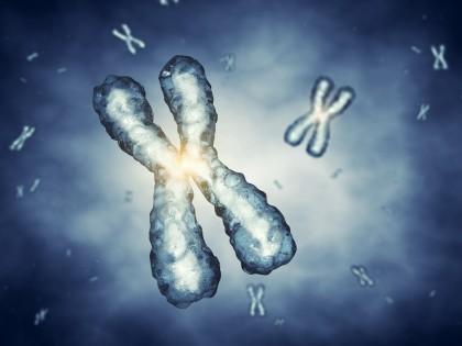 Noi simulări pentru a face terapia genică mai eficientă