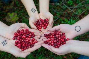 O alimentație bogată în fructe de pădure, mere și ceai ar putea proteja împotriva bolii Alzheimer