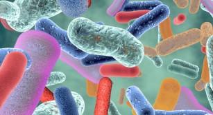 Remodelarea microbiomului intestinal îmbunătățeşte sănătatea cardiovasculară