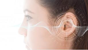 Sunetele influențează creierul în curs de dezvoltare mai devreme decât se credea anterior