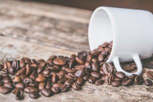 Consumul regulat de cofeină afectează structura creierului