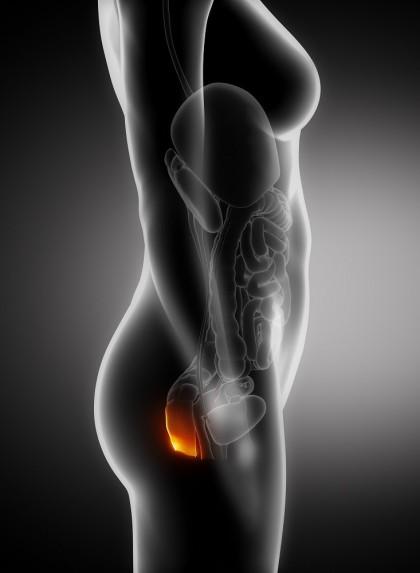 Prolapsul rectal (Procidenta rectala)