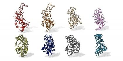 Noi caracteristici despre structura unei proteine ar putea avea implicații majore pentru viitoarele tratamente ale virusurilor pandemice de tip SARS