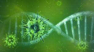 O nouă bază națională de date privind COVID-19 vine în ajutorul cercetătorilor