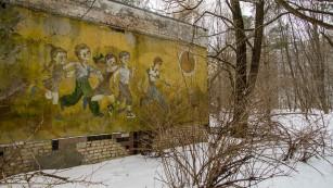 Efectele genetice ale radiațiilor de la Cernobîl