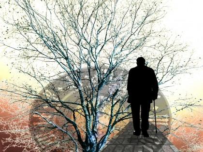 Modificările genetice care stau la baza declinului cognitiv al îmbătrânirii