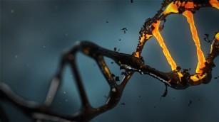 Metilarea ADN-ului și ceasul epigenetic