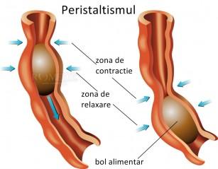 Spasmul esofagian