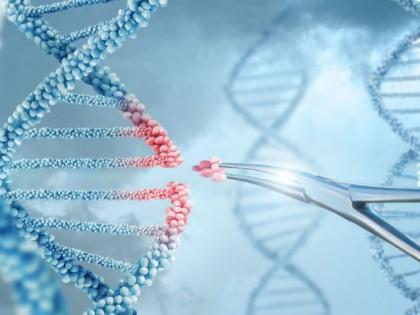 """Terapia genică inovatoare """"reprogramează"""" celulele pentru a inversa deficiențele neurologice"""