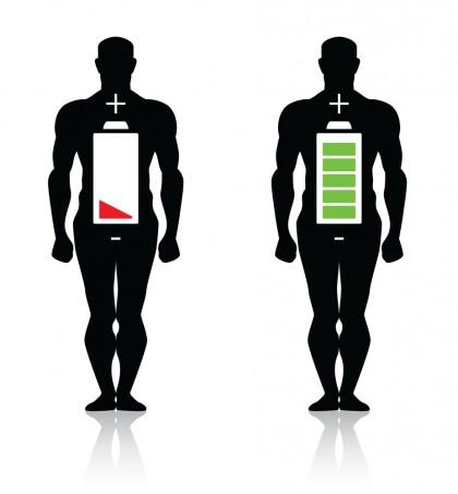 Consumul de energie in stare de repaus - Metabolismul bazal