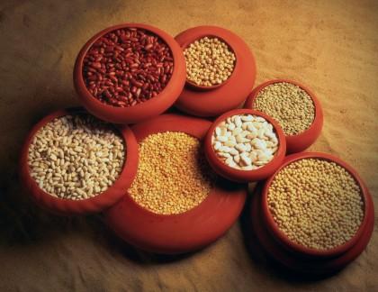 Proteinele în alimentația vegetariană și vegană